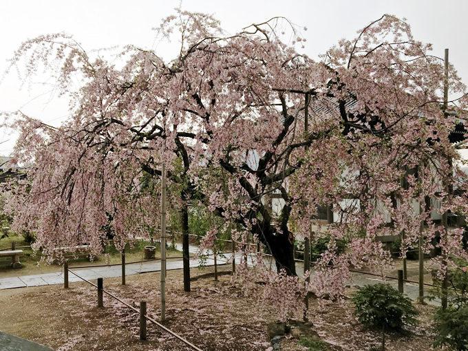 天寧寺(尾道市)