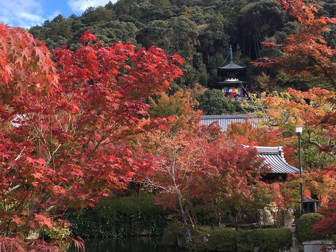 永観堂(禅林寺)の御朱印(京都)