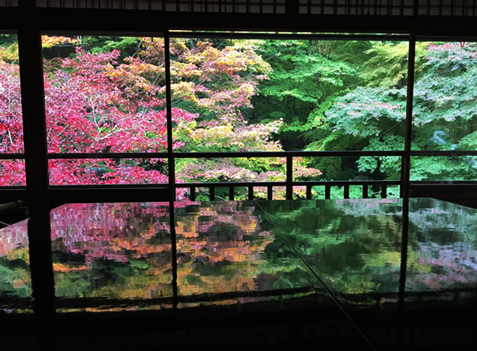 瑠璃光院・瑠璃の庭