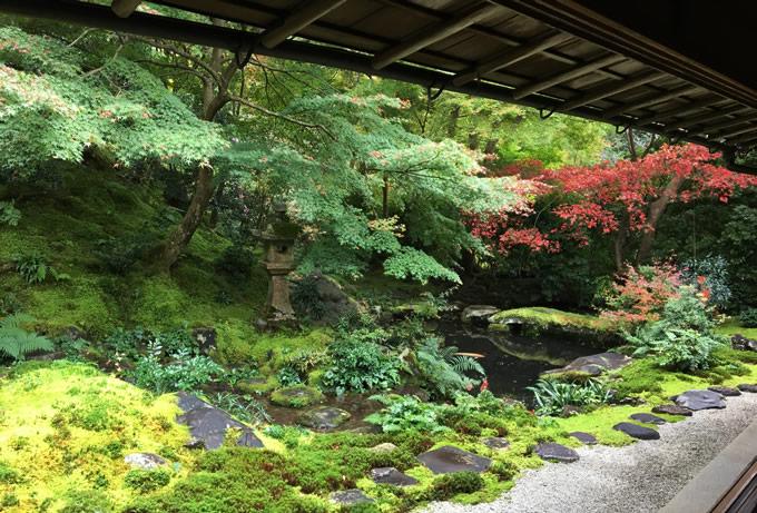 瑠璃光院・臥龍の庭