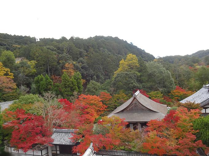 南禅寺・天寿庵(京都)