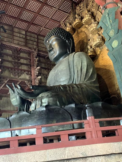 東大寺 大仏 盧舎那仏像